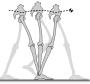 abschlussarbeiten:msc:inverted_pendulum.png