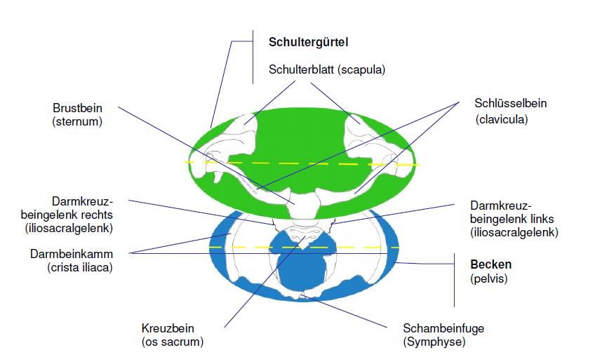 Charmant Küchenspüle Rohre Diagramm Ideen - Küchenschrank Ideen ...