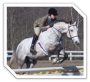 biomechanik:projekte:ss2012:icon_reiten.png