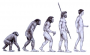 biomechanik:projekte:ss2013:evolution.png