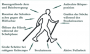 biomechanik:projekte:ss2013:walking-haltung.png