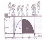 biomechanik:projekte:ss2020:drop_jump.png