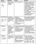 biomechanik:projekte:ss2020:tabelle2.png