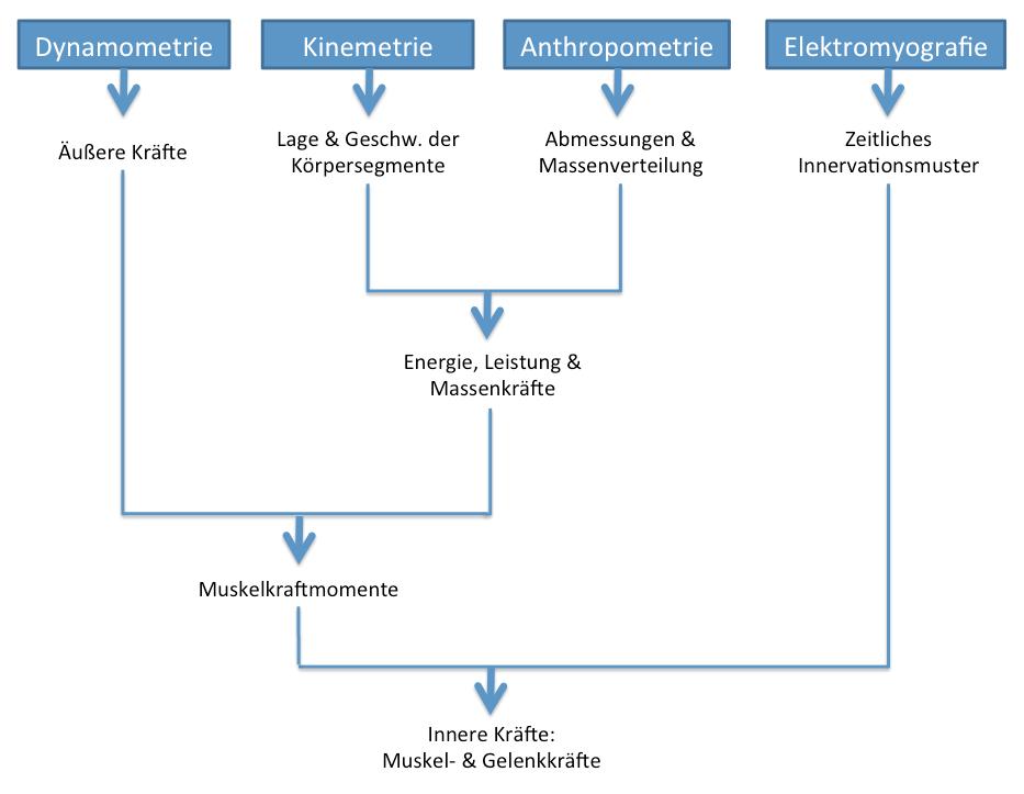 uebersicht_ballreich.png